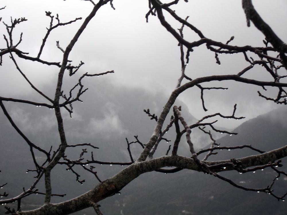 Ορεινή ΄Ηπειρος/φωτό: Γιάννης Βέλλης