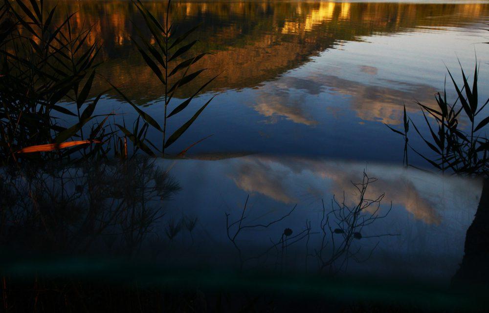 Φθινόπωρο/φωτό: Σπύρος Τσακίρης