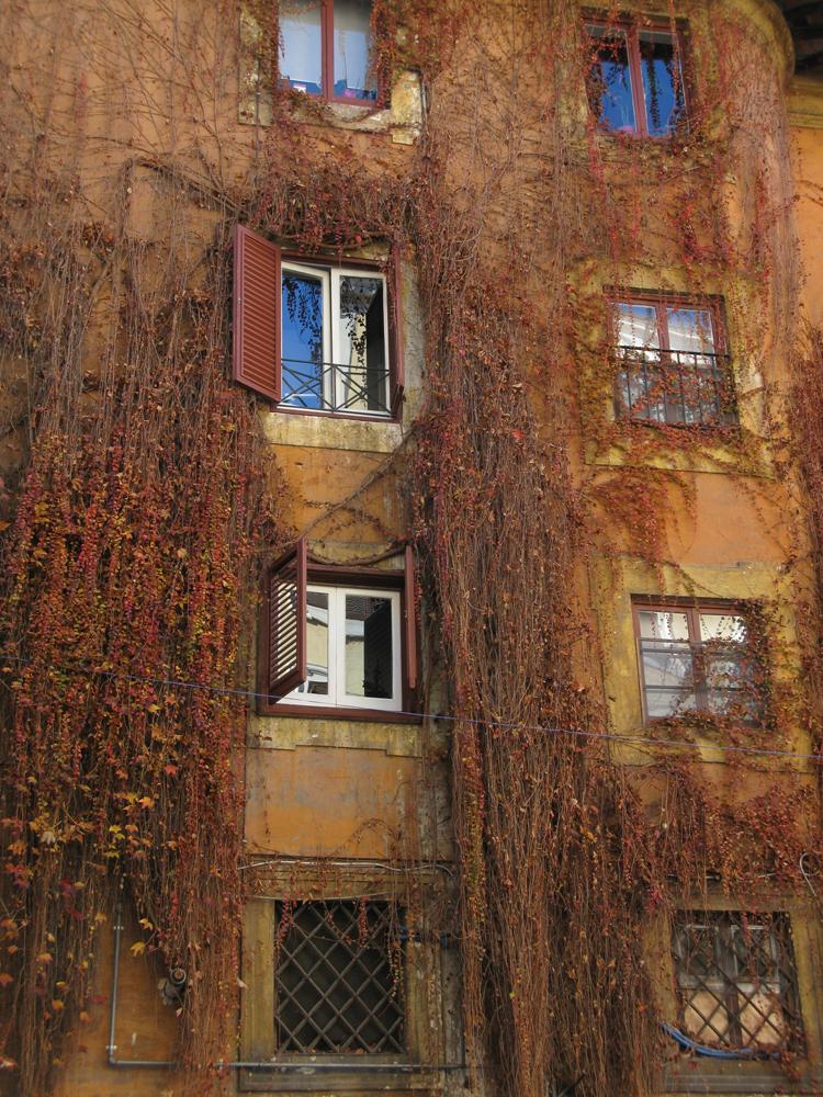 rome-street-2